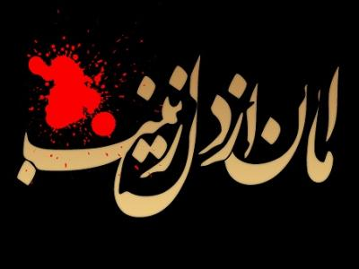 چرا حضرت زینب(س) را عقیله بنی هاشم نامیدند؟