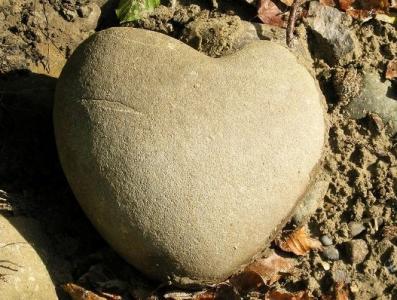 دعا قساوت قلب را برطرف میکند