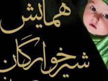 برنامه ریزی برای برگزاری ۶۲۰۰ همایش شیرخوارگان حسینی در ایران و ۴۵ کشور