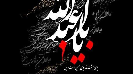 ارادت شاعران به دو طفلان حضرت زینب (س)