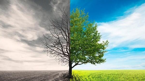 رابطه میان دنیا و آخرت، چه نوع ارتباطی است؟