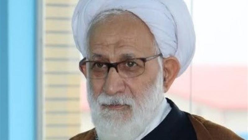حجت الاسلام شکری؛ انقلاب اسلامی با ترویج فرهنگ ایستادگی خدمت بزرگی به جهانیان کرد
